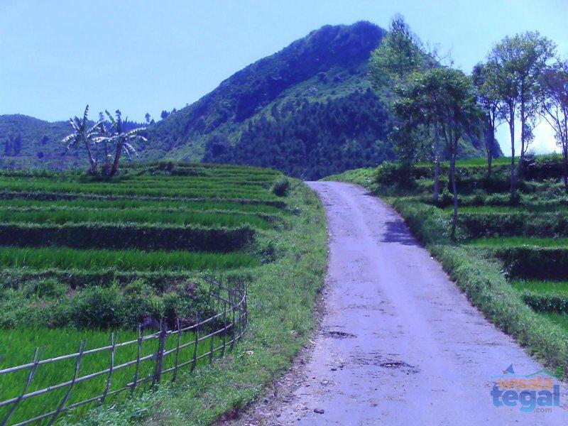 Perbukitan Batunyana Bojong Kabupaten Tegal