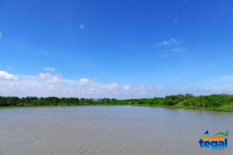 Hutan Kota Polder Bayeman Kaligangsa