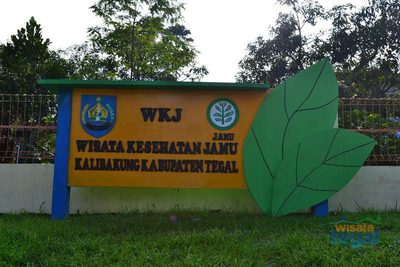 Profil Wisata Kesehatan Jamu (WKJ) Kalibakung, Kabupaten Tegal