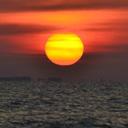 Pulau Kodok Martoloyo